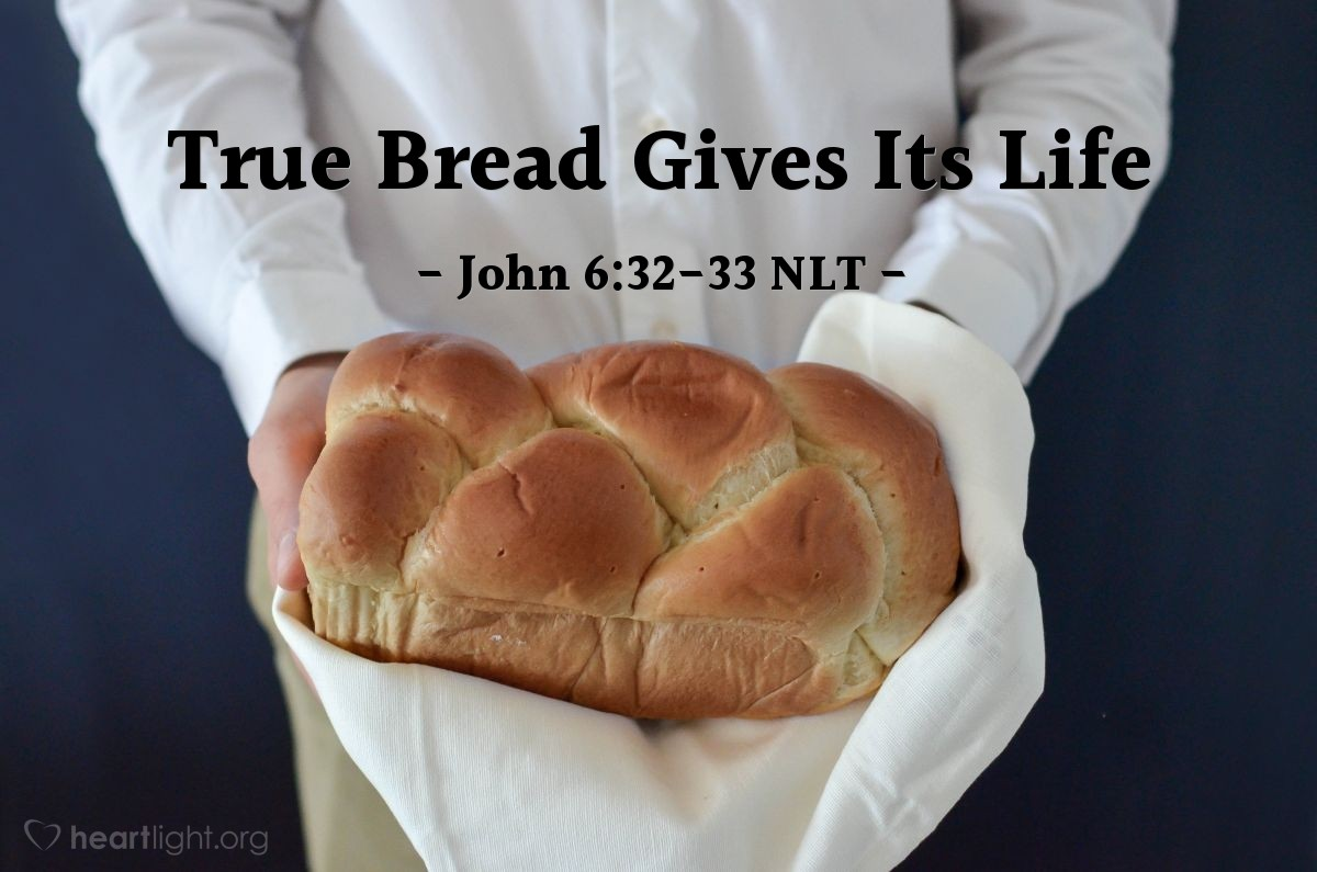 "Illustration of John 6:32-33 NLT — ""I tell you the truth, Moses didn't give you bread from heaven."""