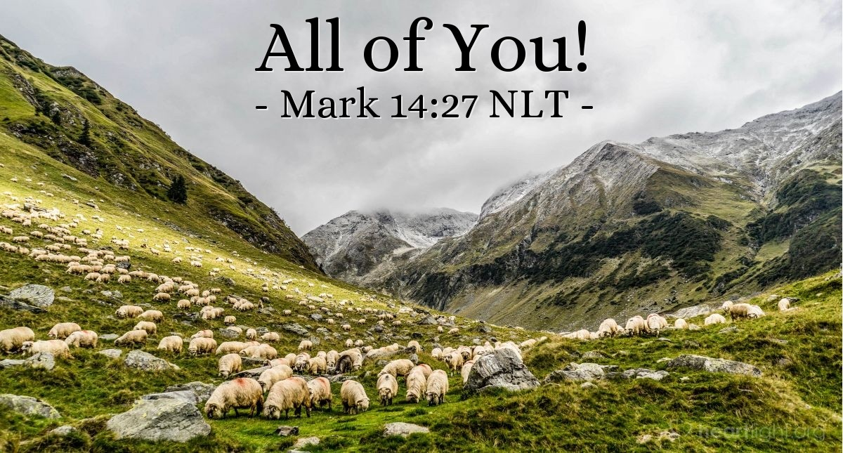 "Illustration of Mark 14:27 NLT — Then Jesus told the followers, ""You will all lose your faith. It is written {in the Scriptures}: 'I will kill the shepherd, and the sheep will run away.'"""