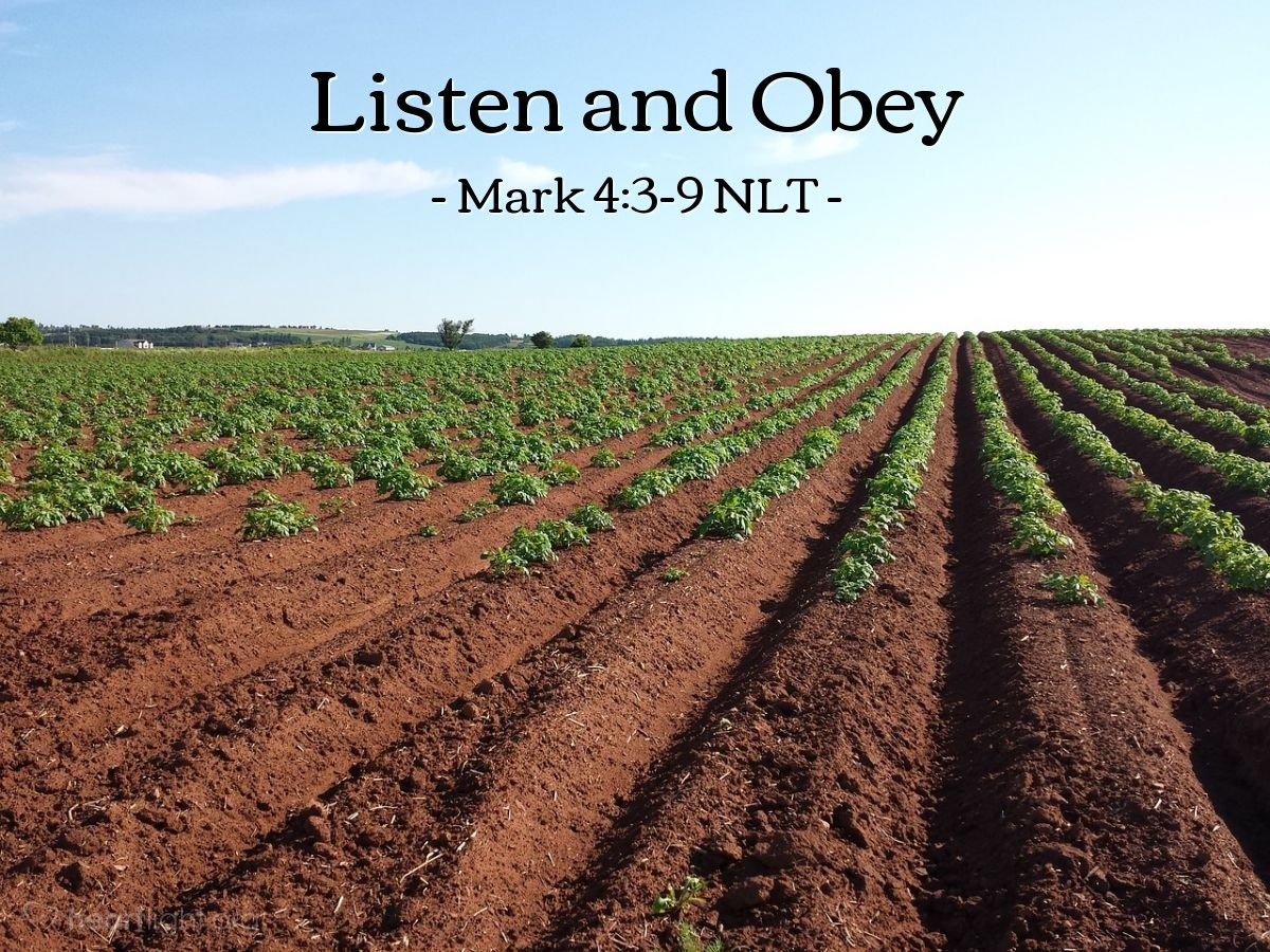 "Illustration of Mark 4:3-9 NLT — ""Listen!"""