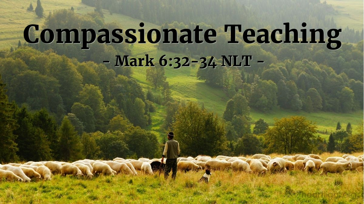 Illustration of Mark 6:33-34 —  So Jesus taught the people many things.