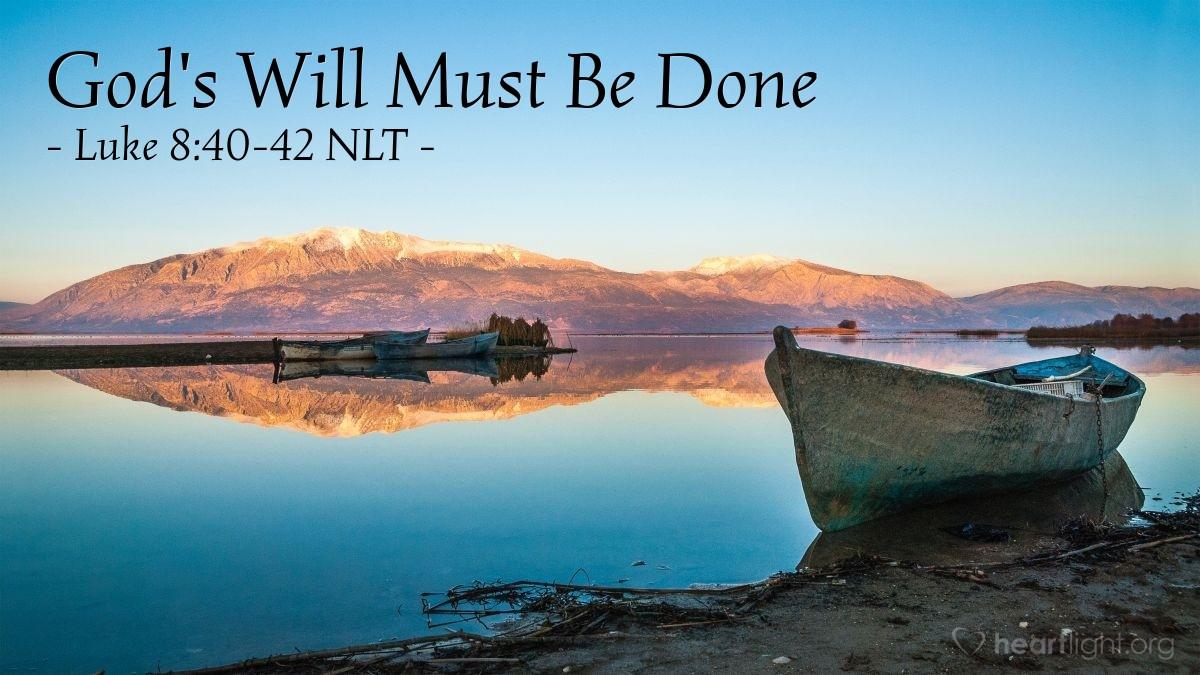 Illustration of Luke 8:40-42 NLT — When Jesus went back to Galilee, the people welcomed him.