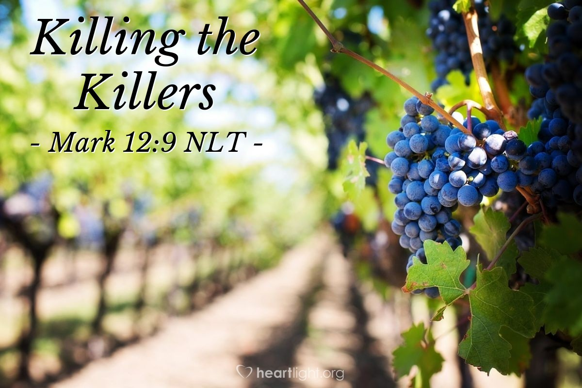 "Illustration of Mark 12:9 NLT — ""So what will the man that owns the vineyard do? He will go to the vineyard and kill those farmers. Then he will lease the land to other farmers."""