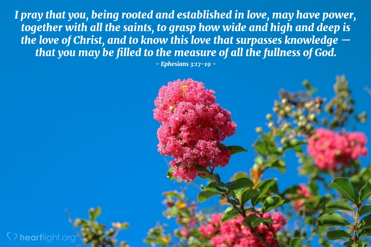 Illustration of Ephesians 3:17-19 — I pray that you, being rooted and established in love, may have power, together with all the saints, to grasp how wide and high and deep is the love of Christ, and to know this love that surpasses knowledge — that you may be filled to the measure of all the fullness of God.